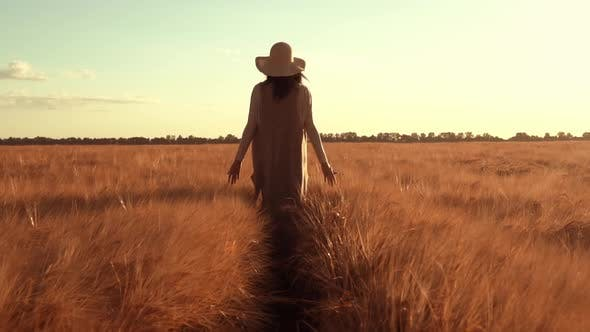 Thumbnail for Landholder Walks Across the Field with Ripened Wheat