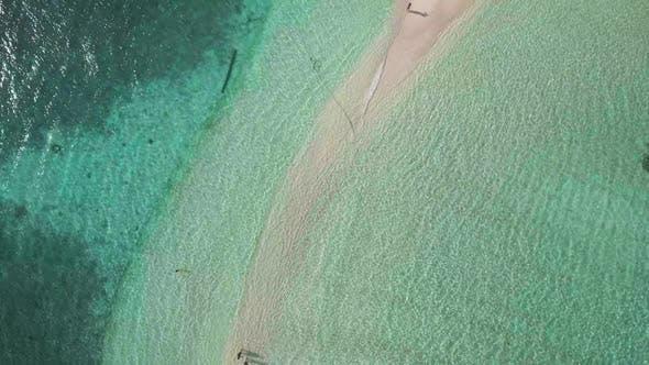 Thumbnail for Paradise Tropical Beach