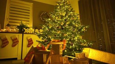 Many Presents Under Christmas Tree