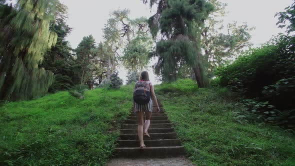 Thumbnail for Girl Climbs Up the Hill Along Stone Staircase Through a Forest of Coniferous and Tropical Trees