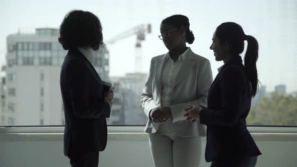 Cover Image for Professional Businesswomen Talking in Office