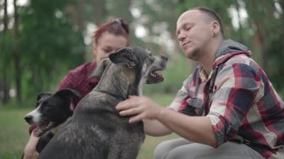 Side View of Smiling Man Stroking Dog and Talking with Pet As Blurred Woman and Domestic Animal
