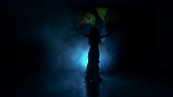 Thumbnail for Exotische Bauchtänzerin Frau Tanz mit zwei bunten Fans in dunkel, Schatten, Rauch, Silhouette