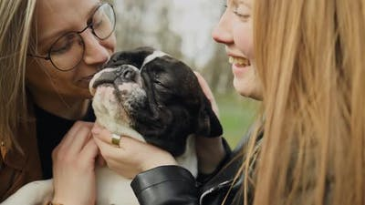 Cute Lesbian Couple Kissing Their Dog in Park