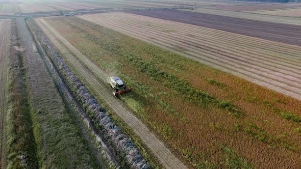 Thumbnail for Agriculture Aerial Overhead