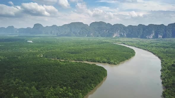 Thumbnail for Aerial View on Mangrove Forest and River Thailand