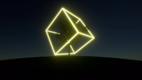 One Tree on a Hill Neon Cube Rotates in the Crown of a Tree