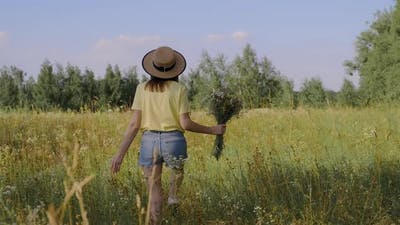 Happy Woman with Bouquet of Wildflowers Walking and Picking Flowers in Meadow Back View