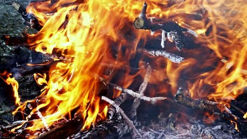 Wooden Fire Burning Like Hell 11
