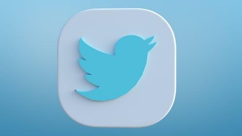 Twitter logo rotation