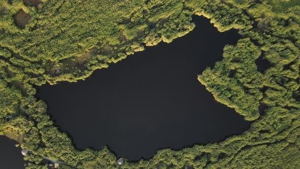 Reeds Lake Aerial Landscape Green