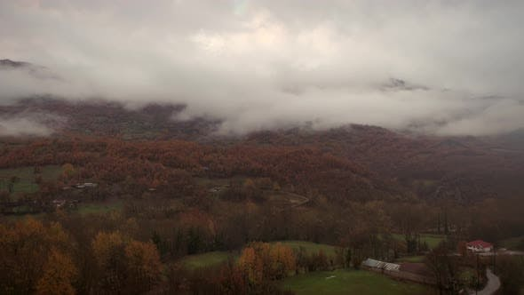 Thumbnail for Aerial view of cloudy landscape with many colorful trees.