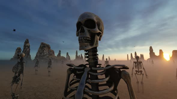 Skeleton and Desert Landscape