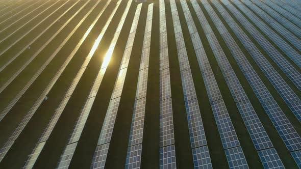 Photovoltaik-Sonnenkollektoren, Sonnenlichtreflexion, Luftaufnahme