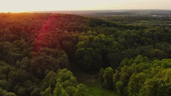 Thumbnail for Aerial at Dawn Green Hills with Trees and Grass