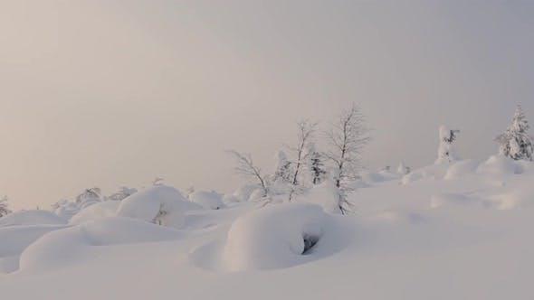 Landscape of the Far North