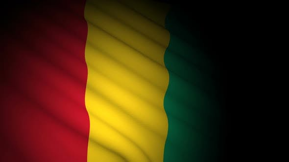 Guinea Flag Blowing in Wind