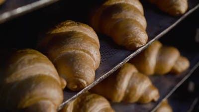 Close View of Plates with Baked Croissants in a Bakery