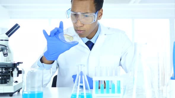 Thumbnail for Scientist in Laboratory Studying Reaction in Watch Glass