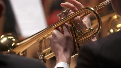 Musician Playing Trumpet at Concert
