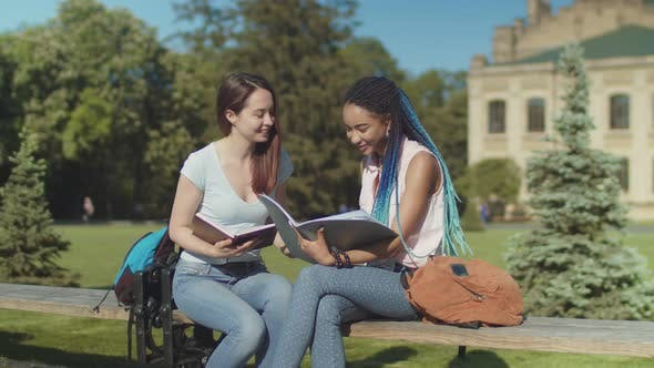 Thumbnail for Two Happy Female Students Chatting Sitting on Bench