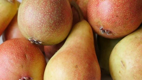 Thumbnail for Lot of tasty fruit  European common pear on pile  slow tilt 4K 2160p 30fps UltraHD footage - Tilting