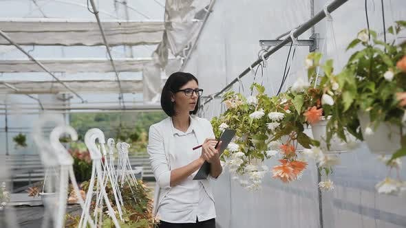 Thumbnail for Female Hlower Sales Manager Inspects Greenhouse Plants