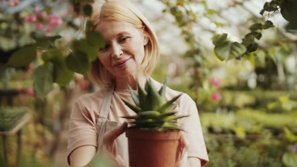 Thumbnail for Cheerful Female Farmer Enjoying Potted Succulent Plant in Greenhouse