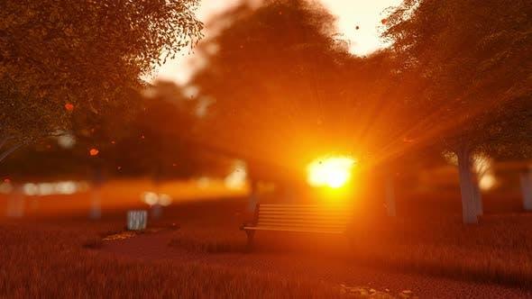 Autumn Park Bench Landscape With Sunset