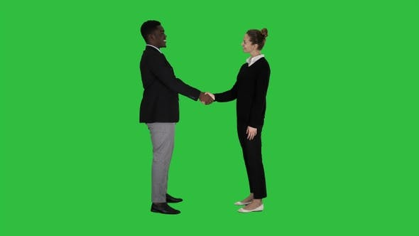 Thumbnail for Business people meet and shake hands on a Green Screen, Chroma Key.