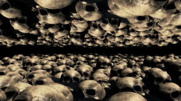 Thumbnail for Skull Stream 01