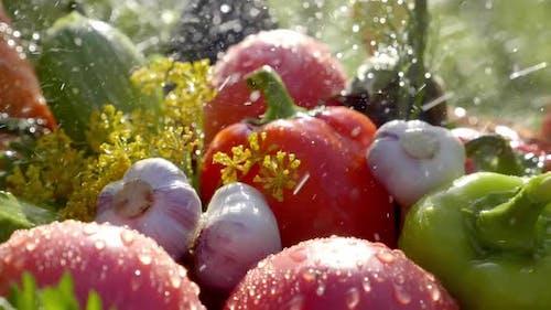 Harvest Home Garden