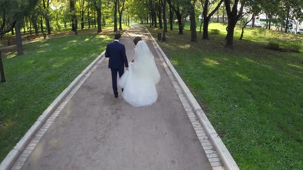 Newly wedded couple walking in green park, aerial view