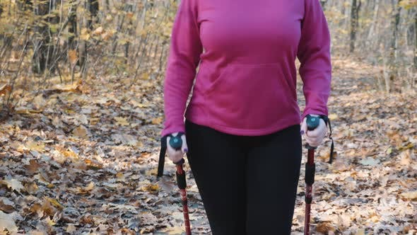 Thumbnail for Nordic walking. Recreational activity with nordic walking poles by chubby woman in autumn park