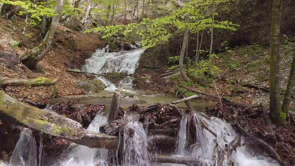 Thumbnail for Moving Backward over Clear Water of Mountain Stream Flow in Sunny Spring Forest