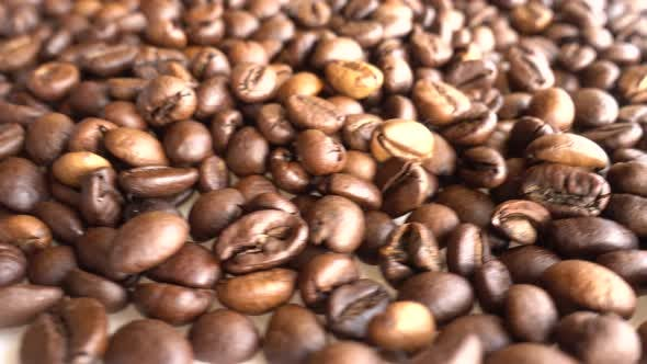 Cover Image for Coffee Grains