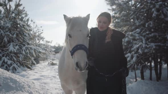 Pretty Girl Walks with Horse in Winter Path, Entering Gates. Young Woman Leading Her Horse with His