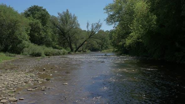 Thumbnail for River at Bronte Creek Provincial Park