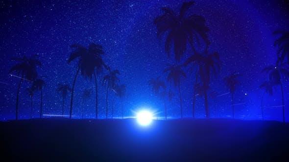 Night Summer Background