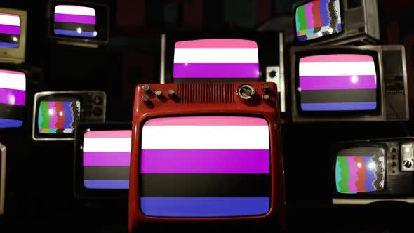 Thumbnail for Genderfluidity Pride Flag and Retro TVs.