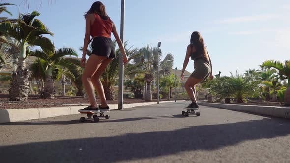 Thumbnail for Two Girls on Skateboards in Short Shorts Rides Along the Road Along the Beach and Palm Trees