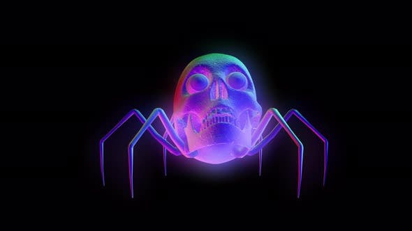 4K Rainbow skull spider with alpha