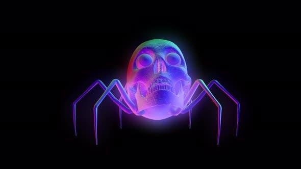 4K Regenbogenschädel Spinne mit Alpha