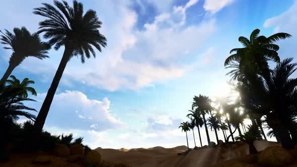 In The Desert 03 HD