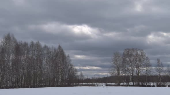 Cover Image for Clouds And Forest In Winter
