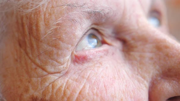 Portrait of Elderly Woman Watching Pensive To Distance. Close Up of Wrinkled Female Face