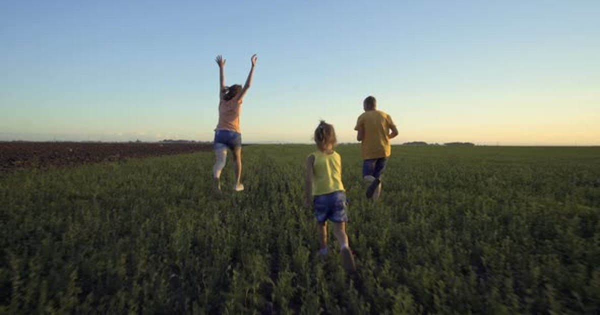 Children Playing In The Summer Field With Grass And Blue Sky
