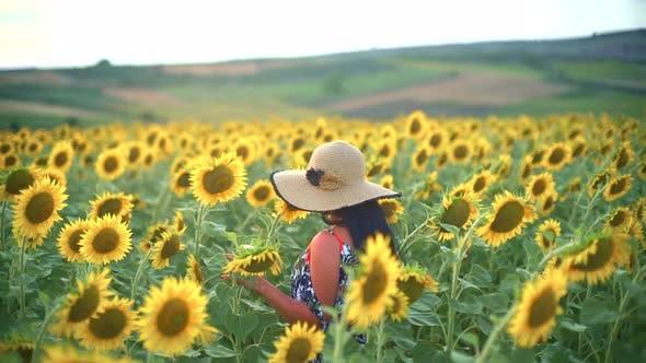 Thumbnail for Happy Woman Walking in Fresh Sunflower Field