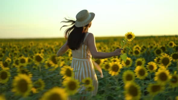 Thumbnail for Beauty Girl with Long Hair in Dress Running on Sunflower Field in Sunset Summer