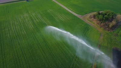 A Jet of Water is Sprayed on the Green Field